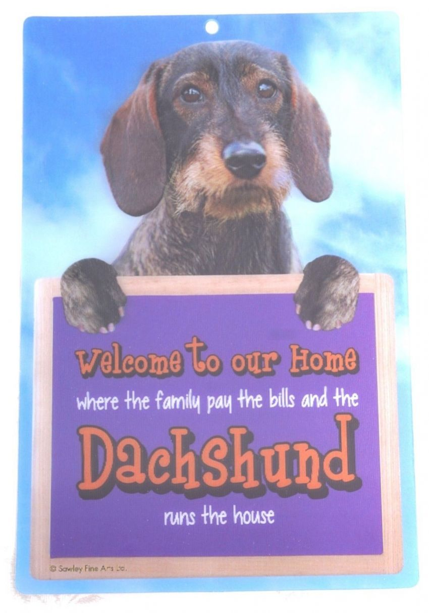DACHSHUND ROUGH COAT 3D WELCOME SIGN STUNNING EYE CATCHING 23CM X 15CM SIGN